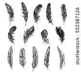 Vector Black And White Feather...