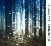 fantasy firefly lights in the...   Shutterstock . vector #532444948
