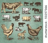 Vintage Farm Animals Drawings...