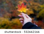 beautiful hand hold 3 color of... | Shutterstock . vector #532662166