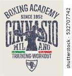 milan gymnasium boxing academy  ... | Shutterstock .eps vector #532707742