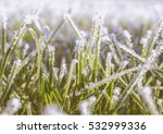 Photo Shows Frost Effects On...