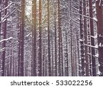snow covered pine trees in... | Shutterstock . vector #533022256