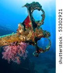 Wreck And Soft Coral