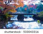 autumn color in japan | Shutterstock . vector #533043316
