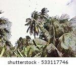 palm tree garden under rain.... | Shutterstock . vector #533117746
