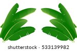 banana leaf vector isolated on... | Shutterstock .eps vector #533139982