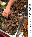 street food in thailand    worm ... | Shutterstock . vector #533154892