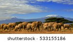 a large group of elephants with ... | Shutterstock . vector #533155186
