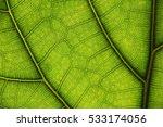 Leaves Macros