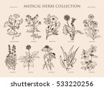 Vector Hand Drawn Collection O...