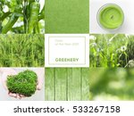 collage with greenery color of... | Shutterstock . vector #533267158