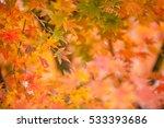 soft  de focused autumn leaves...   Shutterstock . vector #533393686