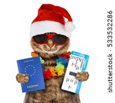 funny cat is wearing a... | Shutterstock . vector #533532286