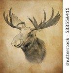 moose on vintage background.... | Shutterstock . vector #533556415