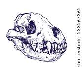 predators skull line art hand... | Shutterstock .eps vector #533567365