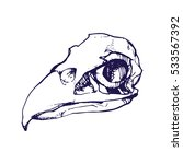 Birds Skull Line Art Hand Draw...