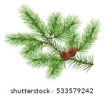 green fluffy cedar branch and...   Shutterstock .eps vector #533579242