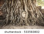 Buddha Head In Tree Roots In...