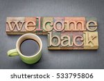 welcome back sign   text in... | Shutterstock . vector #533795806