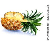 fresh juicy sliced pineapple... | Shutterstock . vector #533808136