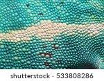 panther chameleon skin close up ... | Shutterstock . vector #533808286