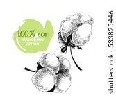 vector hand drawn set of cotton ... | Shutterstock .eps vector #533825446