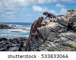 Galapagos Espanola Island Punt...