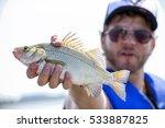 Fisherman with freshly caught freshwater drum fish in lake Erie, Ontario, Canada.