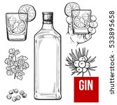 gin bottle  shot glass with ice ... | Shutterstock .eps vector #533895658