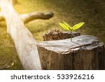 new development and renewal as...   Shutterstock . vector #533926216