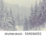 Scenic Snow Covered Forest In...