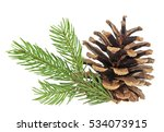 pine cone and fir tree branch... | Shutterstock . vector #534073915