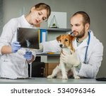 Stock photo veterinarian and assistant in vet clinic at work 534096346