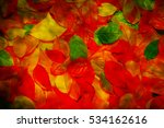 colorful leaves | Shutterstock . vector #534162616