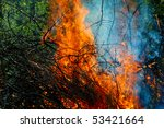 Small photo of Trees afire