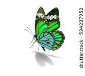 Beautiful Green Monarch...