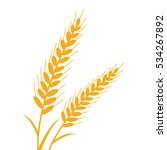 a gold wheat illustration... | Shutterstock .eps vector #534267892