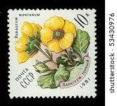 ussr   circa 1981  stamp...   Shutterstock . vector #53430976