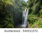 beautiful  aling aling... | Shutterstock . vector #534311572
