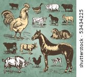 Vintage Farm Animals Drawings...