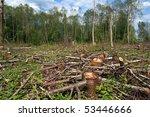 chopping wood | Shutterstock . vector #53446666