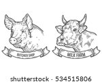 cow and pig head. milk farm ...   Shutterstock . vector #534515806