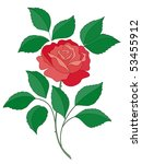 the isolated flower of a rose... | Shutterstock .eps vector #53455912