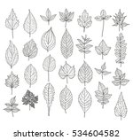 28 hand drawn leaves set. can... | Shutterstock .eps vector #534604582