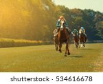 Stock photo horse racing 534616678