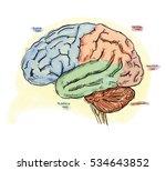 brain power  | Shutterstock . vector #534643852