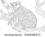 stylized wild lemur  madagascar ... | Shutterstock .eps vector #534648472