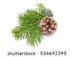 fir tree branch and cones... | Shutterstock . vector #534692395