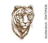 a realistic image of a tiger's... | Shutterstock .eps vector #534739636